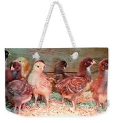 Baby Chicks Under Heat Lamp Art Prints Weekender Tote Bag