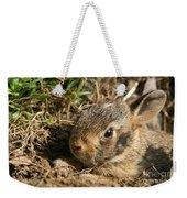 Baby Eastern Cottontail Weekender Tote Bag
