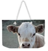 Baby Cow In Colorado Weekender Tote Bag