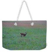 Baby Deer At Sunrise Weekender Tote Bag