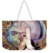 Baby Eastern Gray Squirrel Weekender Tote Bag by Millard H. Sharp