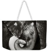 Baby Elephant Seeking Comfort Weekender Tote Bag