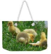 Baby Geese-mayer Lake-savannah Weekender Tote Bag