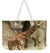 Baby Giraffe 4 Weekender Tote Bag