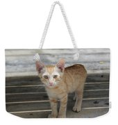 Baby Kitty Weekender Tote Bag