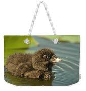 Baby Loon Weekender Tote Bag