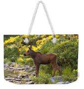 Baby Moose Baxter State Park Weekender Tote Bag