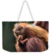 Baby Orangutan Borneo Weekender Tote Bag