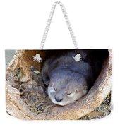 Baby Otter Weekender Tote Bag