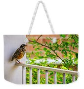 Baby Robin - Such A Big World Weekender Tote Bag