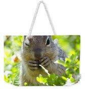 Baby Rock Squirrel  Weekender Tote Bag
