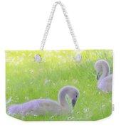 Baby Swans Enjoy A Summer Day Weekender Tote Bag