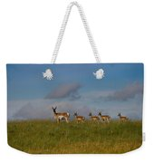 Babysitting - Antelope - Johnson County - Wyoming Weekender Tote Bag