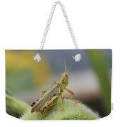 Back Side View Of Green Grasshopper....   # Weekender Tote Bag