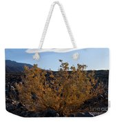 Backlit Desert Foliage Weekender Tote Bag