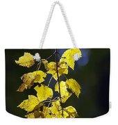 Backlit Leaves Of Autumn Weekender Tote Bag