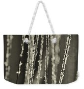 Backlit Sepia Toned Wild Grasses In Black And White Weekender Tote Bag