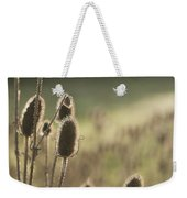 Backlit Teasel Weekender Tote Bag