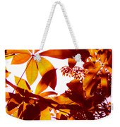 Backlit Tree Leaves 2 Weekender Tote Bag