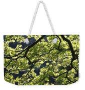 Backlit Tree Weekender Tote Bag