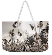 Backlit Winter Reeds Weekender Tote Bag