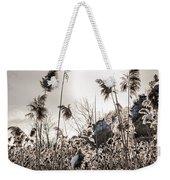 Backlit Winter Reeds Weekender Tote Bag by Elena Elisseeva