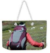 Backpacker Watches Dall Sheep Weekender Tote Bag