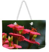 Backyard Beauties Weekender Tote Bag