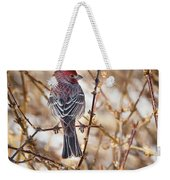 Backyard Birds Male House Finch Weekender Tote Bag