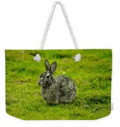 Backyard Bunny In Black White And Green Weekender Tote Bag