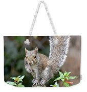 Backyard Burglar Weekender Tote Bag