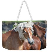 Bad Hair Day 8024 Weekender Tote Bag