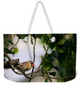Bad Hair Day-female Northern Cardinal Weekender Tote Bag