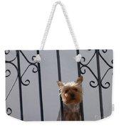 Balcony Dog Weekender Tote Bag