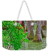 Bald Cypress And Red Buckeye Tree At Mile 122 Of Natchez Trace Parkway-mississippi Weekender Tote Bag