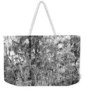 Bald Cypress Swamp In Black And White Weekender Tote Bag