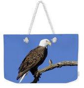 Bald Eagle 4 Weekender Tote Bag