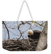 Bald Eagle And Eaglet Weekender Tote Bag