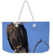 Bald Eagle Calling Weekender Tote Bag