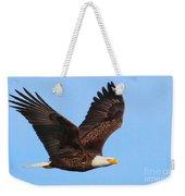 Bald Eagle In Flight Weekender Tote Bag by Debbie Stahre