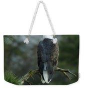 Bald Eagle In Tree Weekender Tote Bag