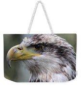 Bald Eagle - Juvenile - Profile Weekender Tote Bag