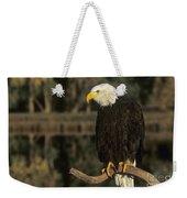 Bald Eagle On Dead Snag Wildlife Rescue Weekender Tote Bag