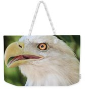 American Bald Eagle Portrait - Bright Eye Weekender Tote Bag