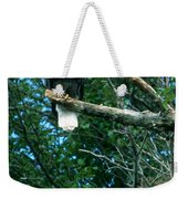 Bald Eagle Poses Weekender Tote Bag