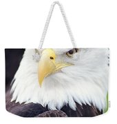 Bald Eagle - Power And Poise 04 Weekender Tote Bag