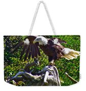 Bald Eagle With A Broken Wing In Salmonier Nature Park-nl Weekender Tote Bag
