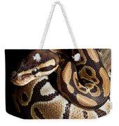 Ball Python Python Regius Weekender Tote Bag