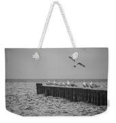 Baltic Sea-gulls Weekender Tote Bag