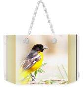 Baltimore Oriole 4348-11 - Bird Weekender Tote Bag